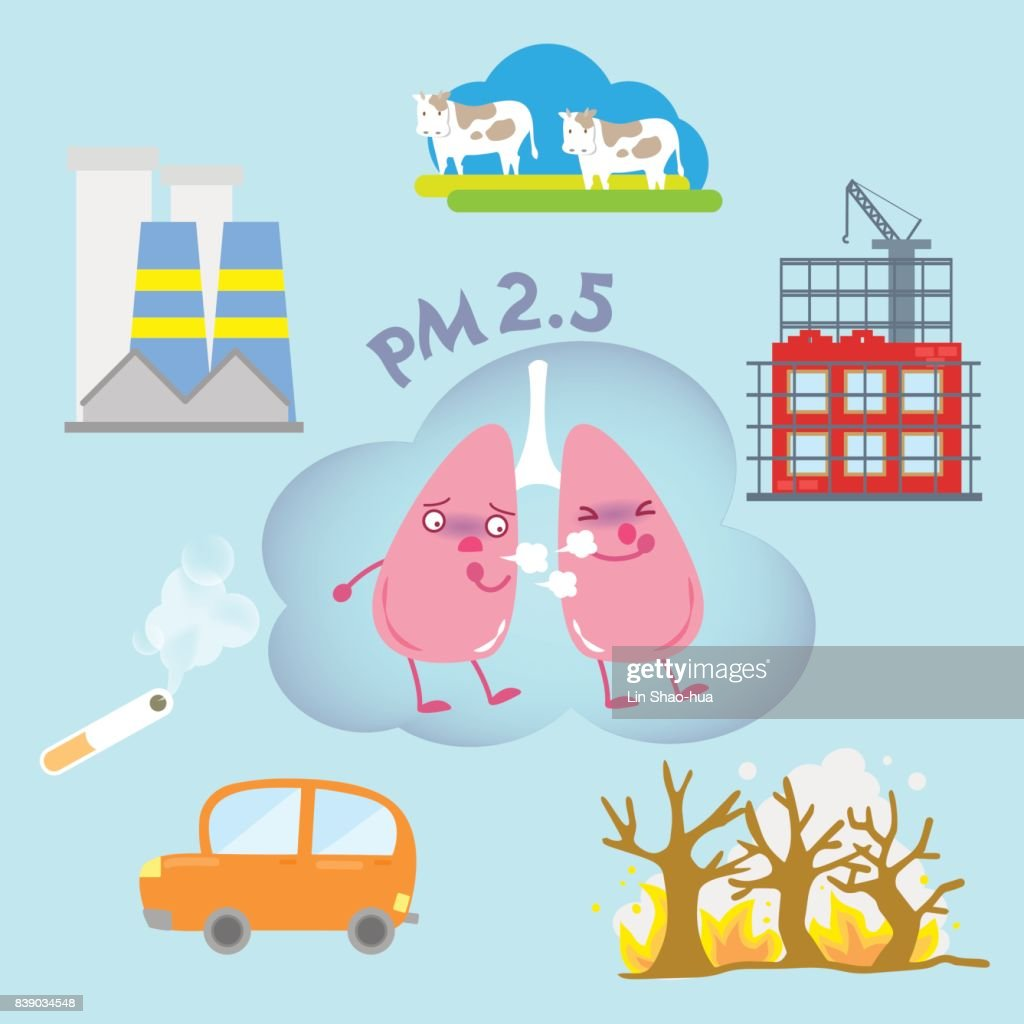 lung with air pollution