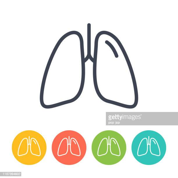 lungs icon - thin line vector. health and medicine - lung stock illustrations