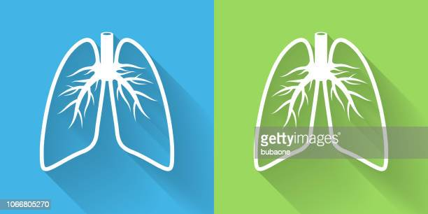lungs icon with long shadow - lung stock illustrations