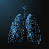 lungs low poly blue