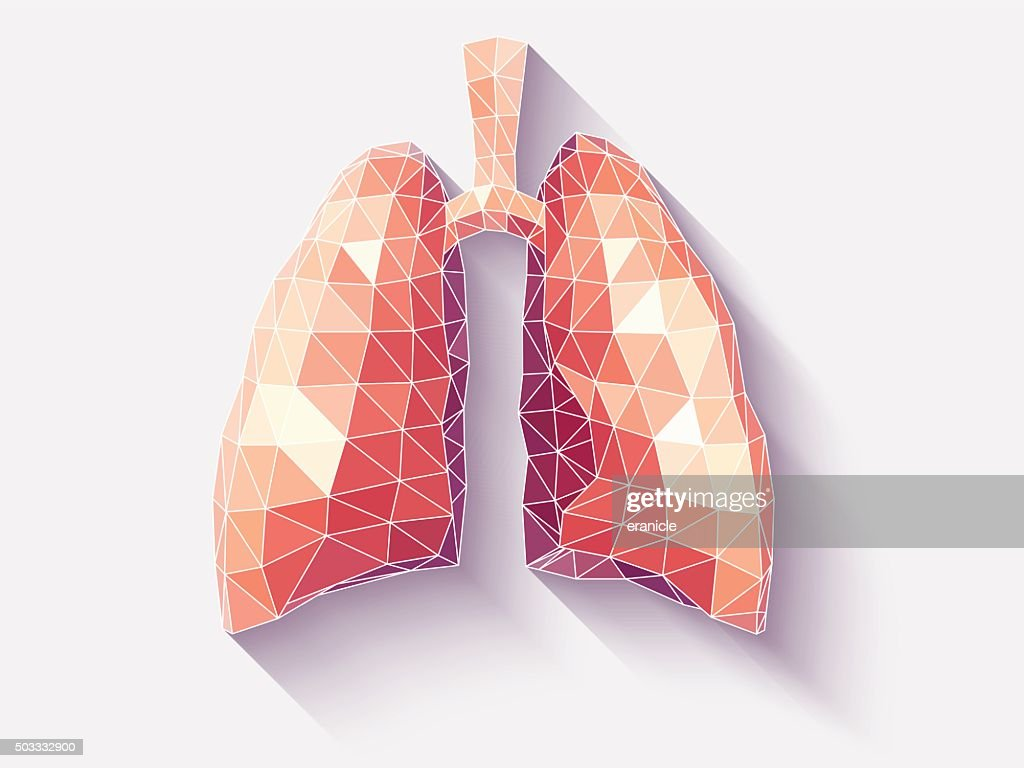 Lungs poly faceted