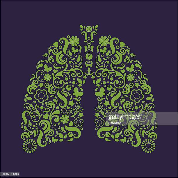 lungs. - human lung stock illustrations, clip art, cartoons, & icons