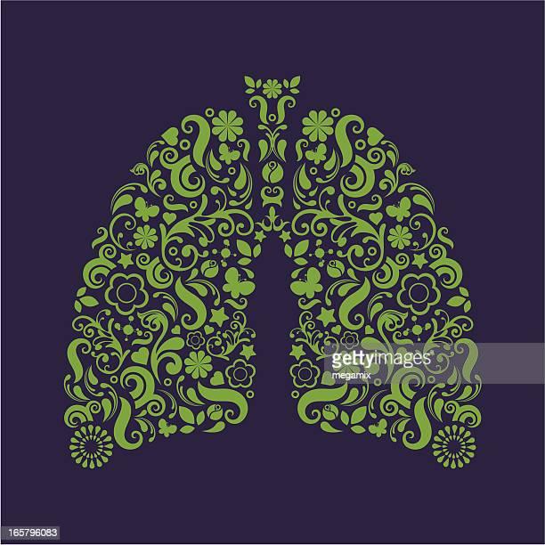 ilustraciones, imágenes clip art, dibujos animados e iconos de stock de los pulmones. - pulmones humanos