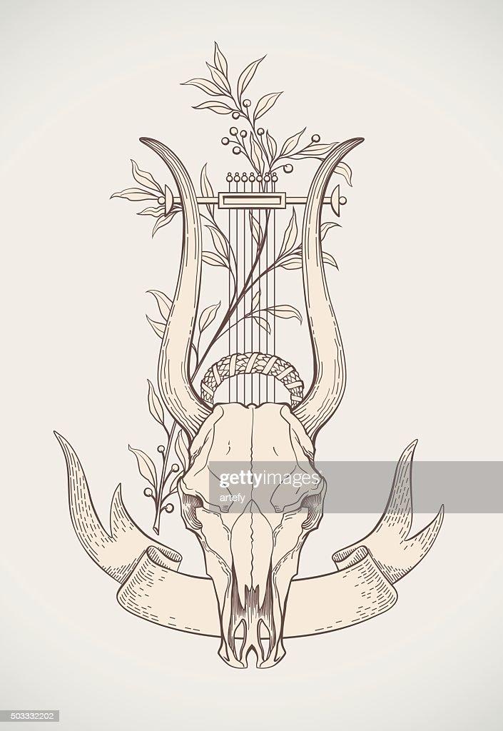 Lyre-horn skull