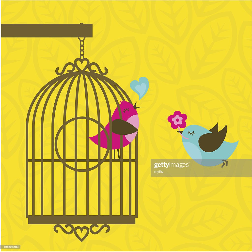 I´m your birdfriend