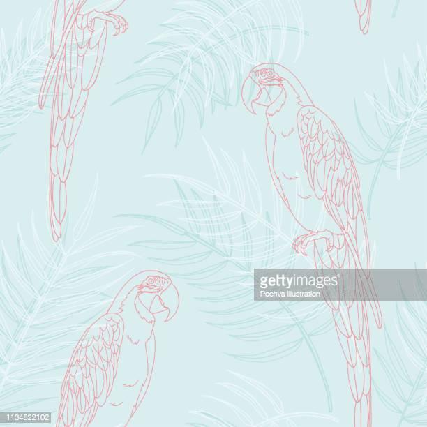 ara und palm lässt nahtloses muster - pastellfarbig stock-grafiken, -clipart, -cartoons und -symbole