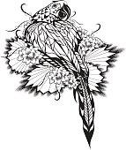 Macaws Tattoo