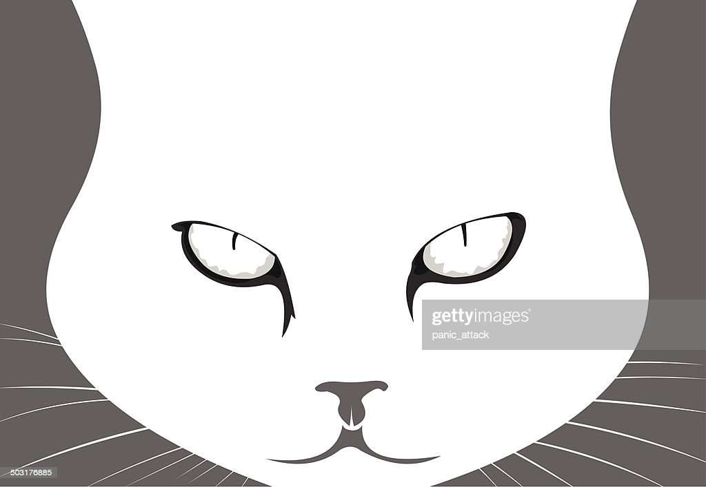 Mad cat portrait vector illustration