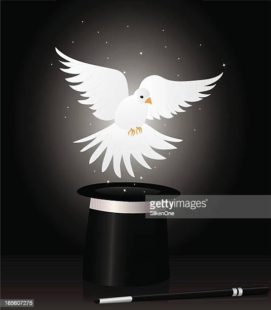 ilustraciones, imágenes clip art, dibujos animados e iconos de stock de paloma mágica - paloma blanca