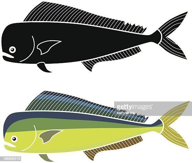 mahimahi - dolphin fish stock illustrations