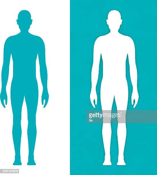 Männlichen Körper formen