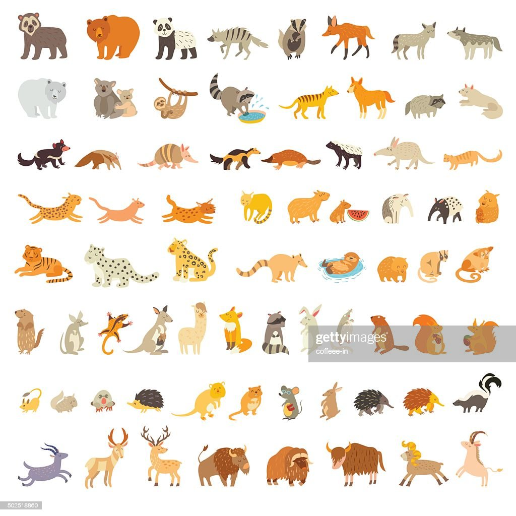 Mammals of the world. Extra big animals set