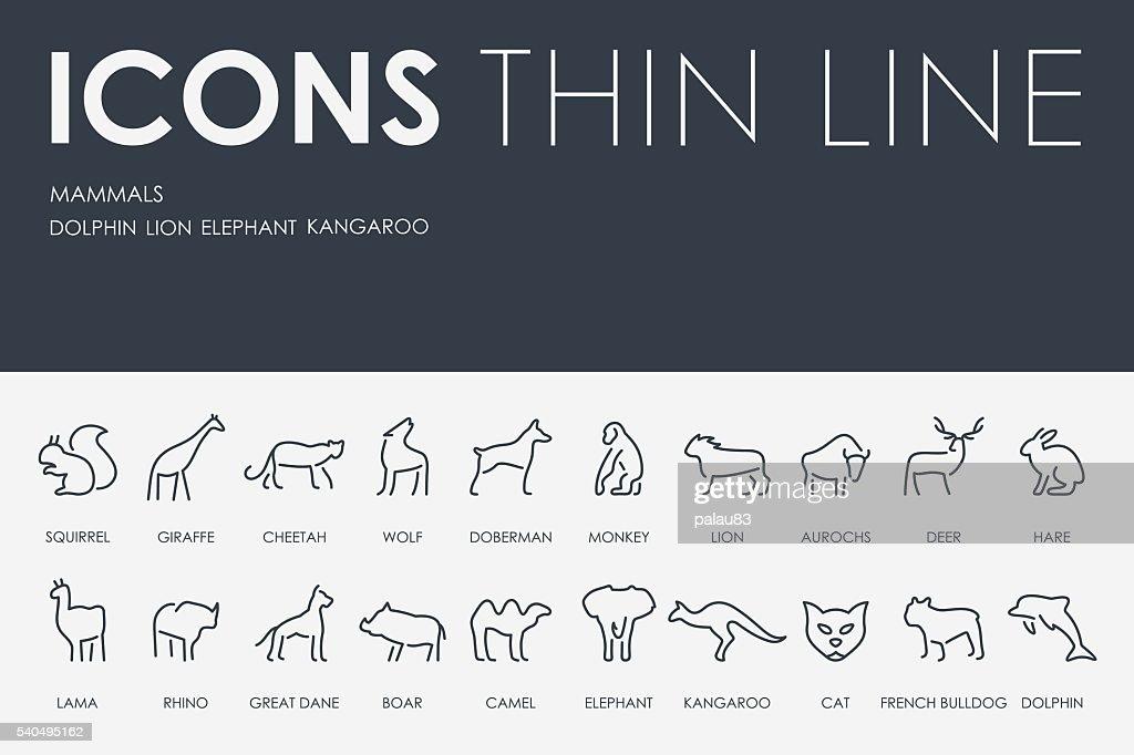 Mammals Thin Line Icons