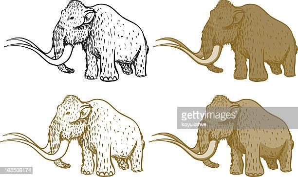 mammoth - cartoon characters with big teeth stock illustrations