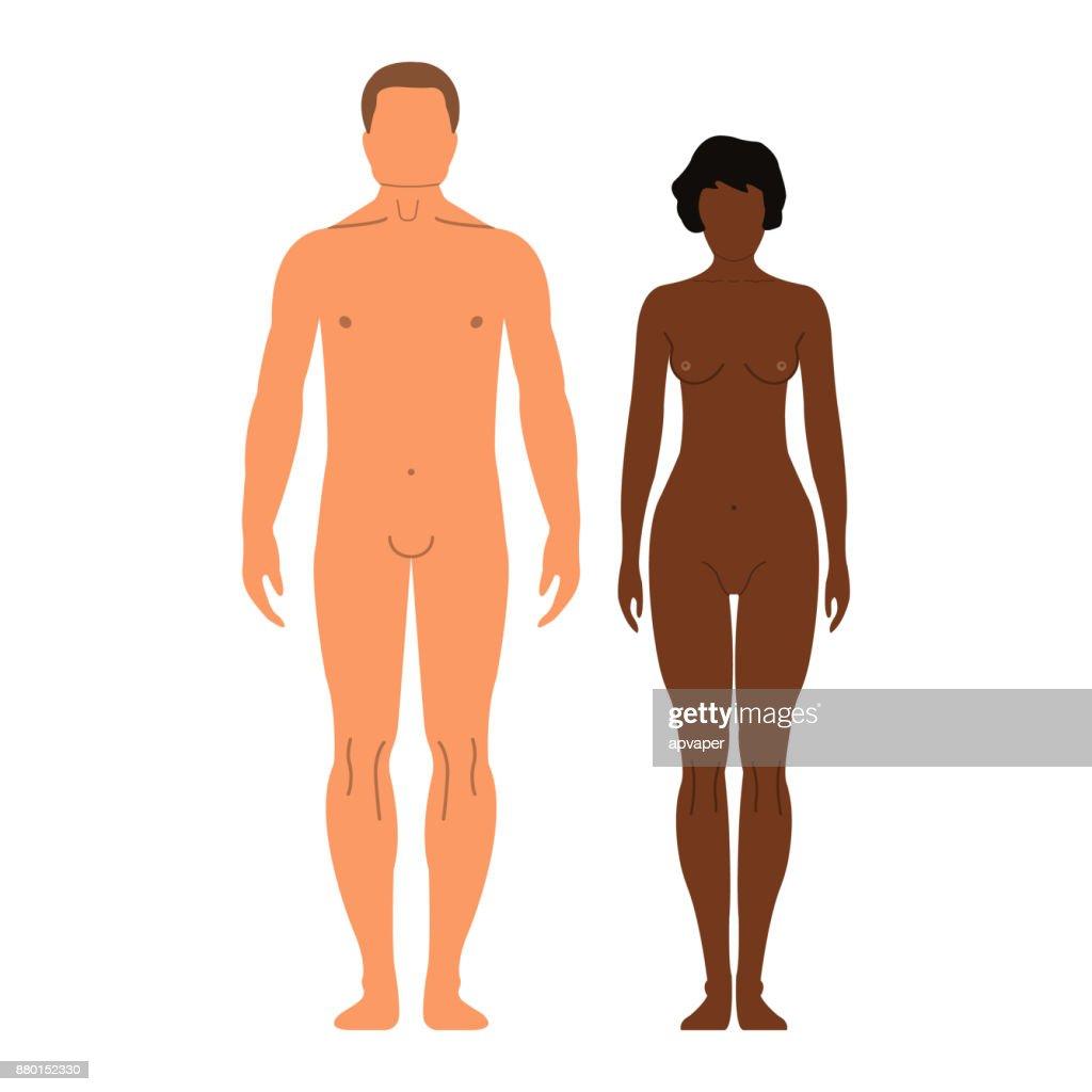 Mann Und Frau Menschlichen Vorderseite Silhouette Isolated On White ...