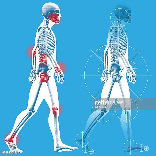 ilustraciones, imágenes clip art, dibujos animados e iconos de stock de hombre de informal a lado de perfil - esqueleto humano