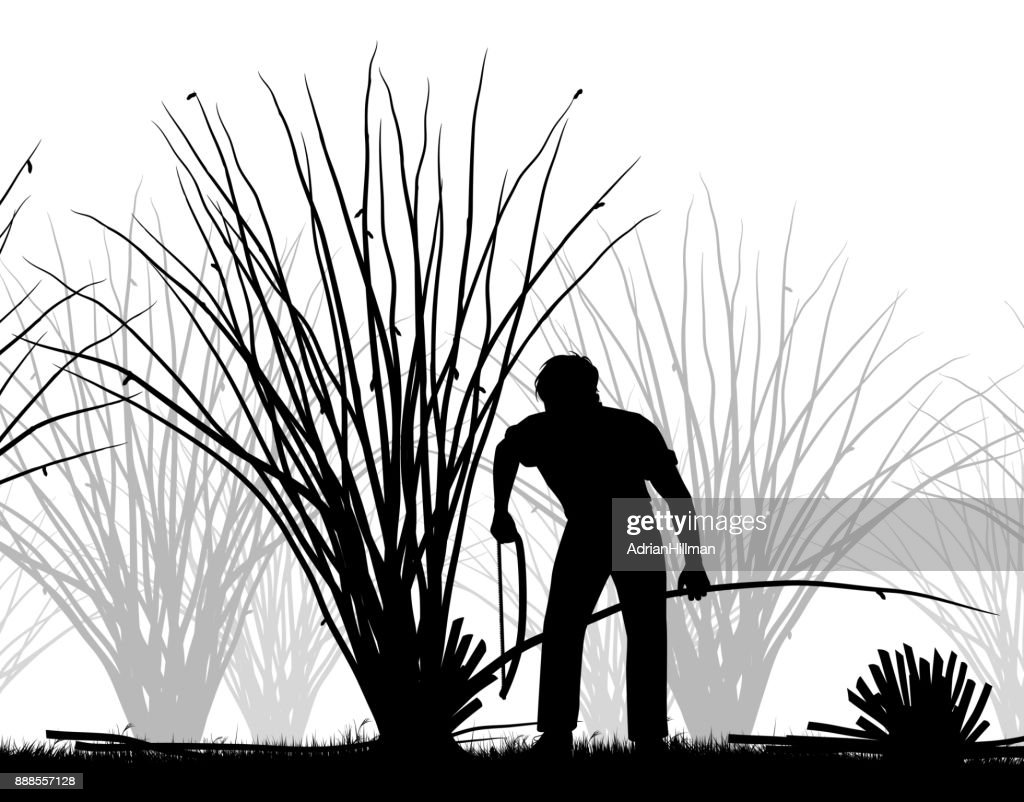 Man coppicing silhouette