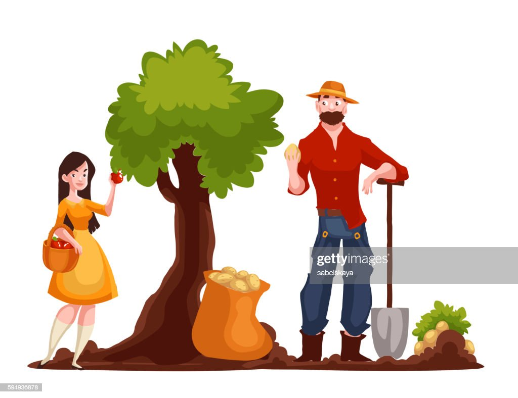 Man harvesting potato and woman picking apples
