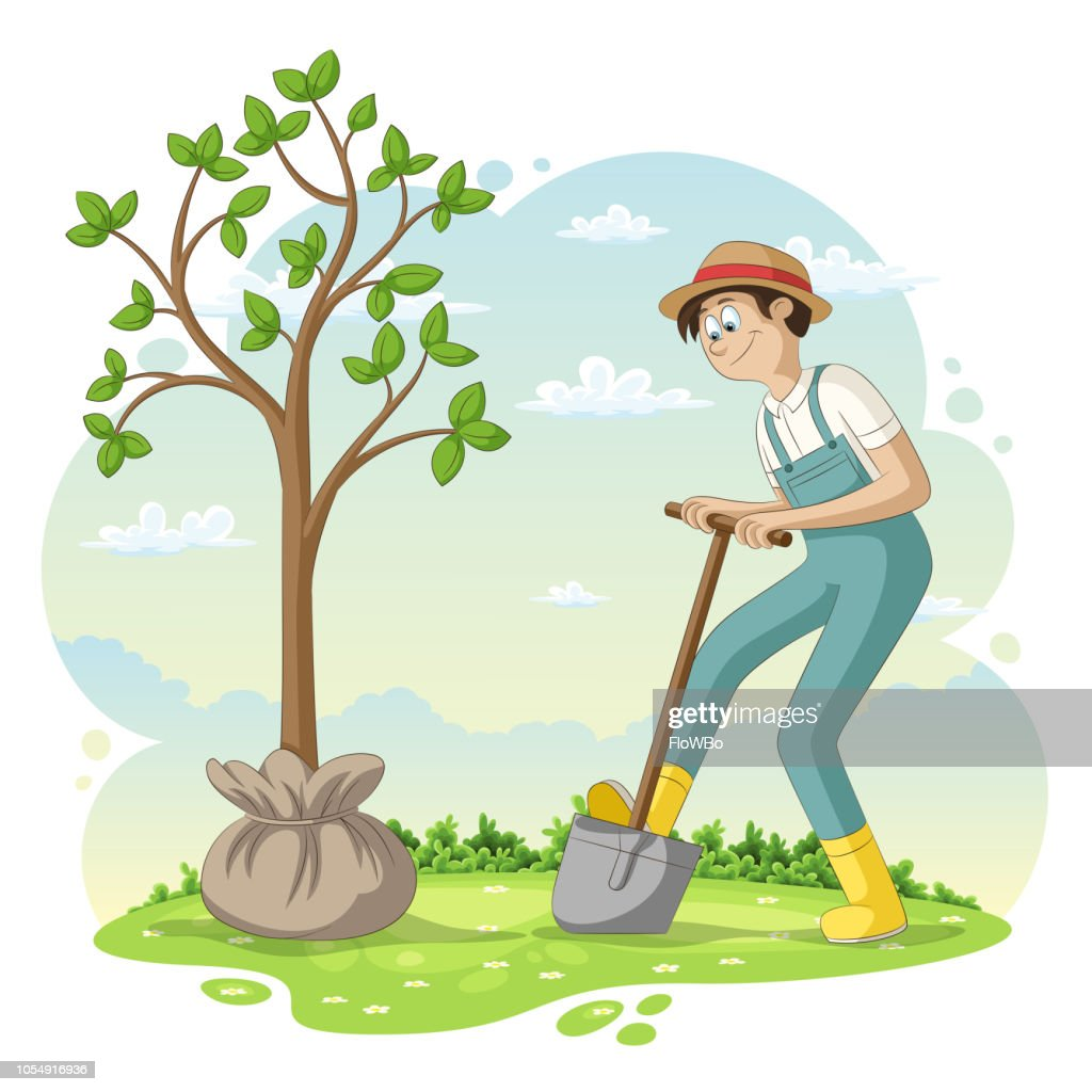 Man Is Planting A Tree