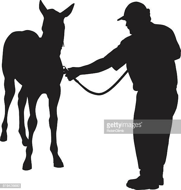 man leading young horse - mare stock illustrations, clip art, cartoons, & icons
