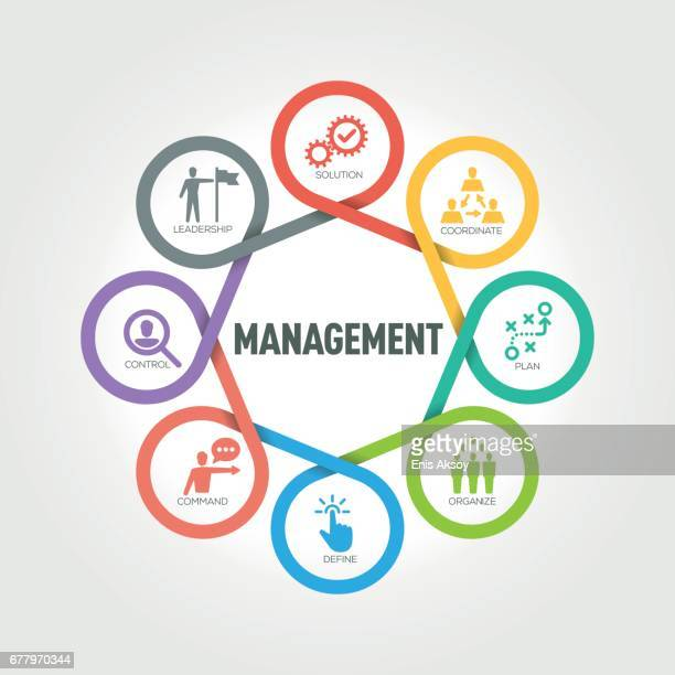 Management infographic with 8 steps, parts, options