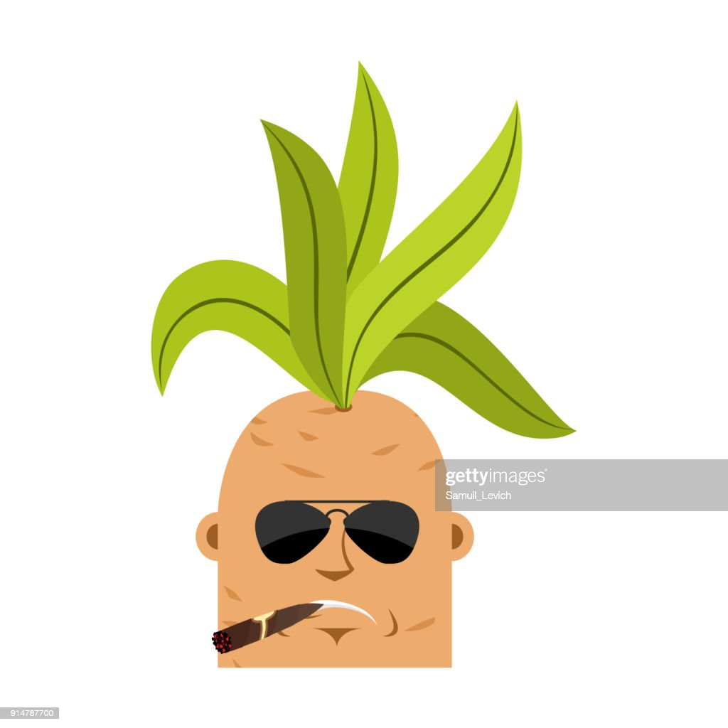 Mandrake root Cool serious avatar emoji. Smoking cigar emotion Legendary mystical plant in form of man.