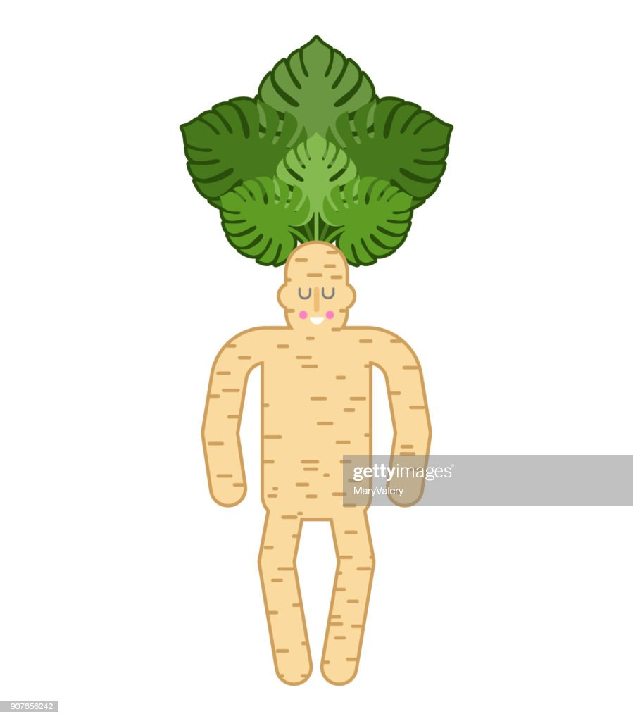 Mandrake root man. Tie and case. Magic plant. Vector illustration