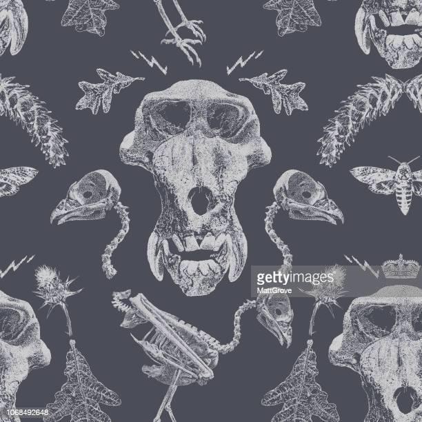 mandrill buzzard skeleton seamless repeat - mandrill stock illustrations, clip art, cartoons, & icons