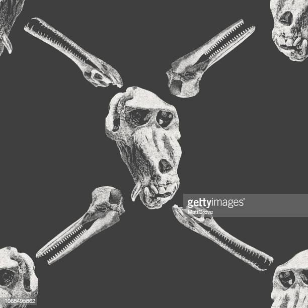 mandrill skull seamless repeat - mandrill stock illustrations, clip art, cartoons, & icons