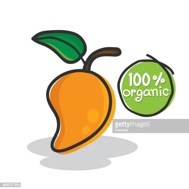 mango fruit - mango fruit stock illustrations, clip art, cartoons, & icons