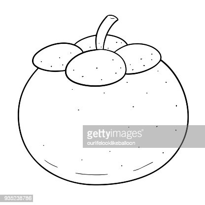 Mangosteen Drawing Images