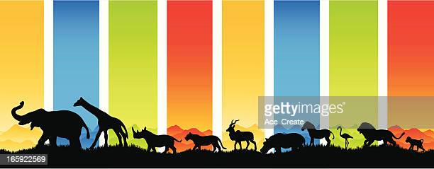Many animals migrate in silhouette