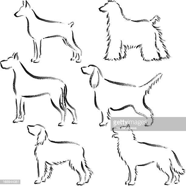 Many dogs Hand Drawn