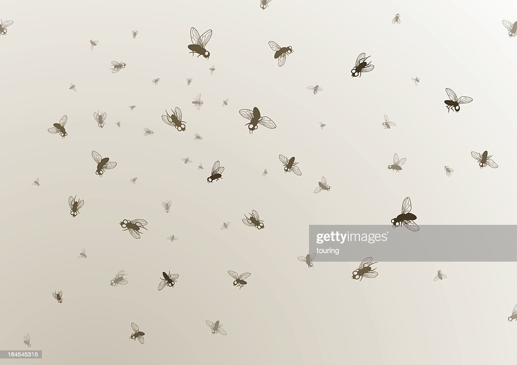 Many large and small black flies on a tan background : stock illustration