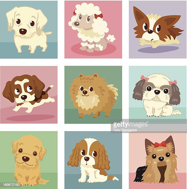 many poses of puppies - golden retriever stock illustrations, clip art, cartoons, & icons