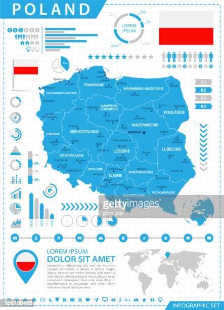 karte von polen - infografik vektor - polnische flagge stock-grafiken, -clipart, -cartoons und -symbole