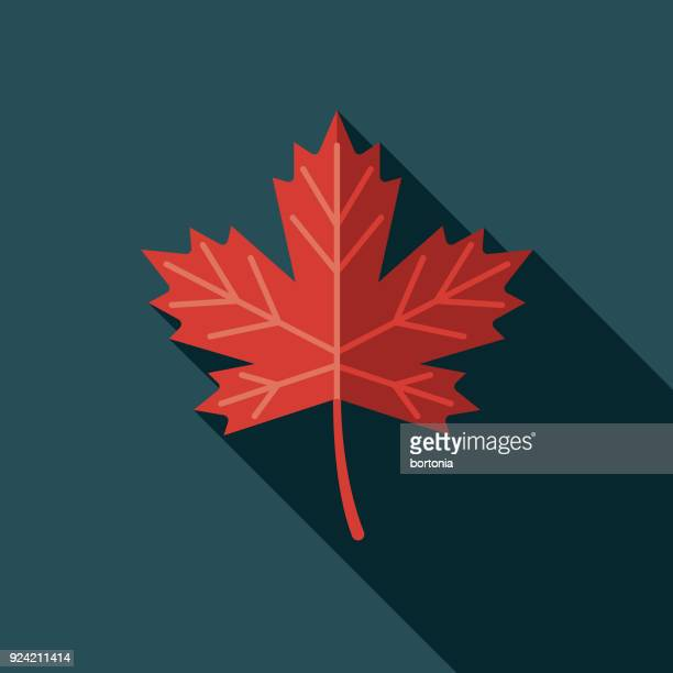 maple leaf flat design canadian icon with side shadow - maple leaf stock illustrations