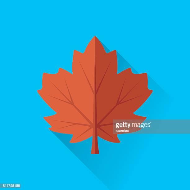maple leaf - maple leaf stock illustrations