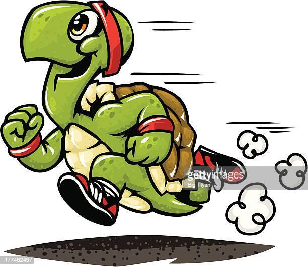 ilustraciones, imágenes clip art, dibujos animados e iconos de stock de maratón de tortuga - tortugas