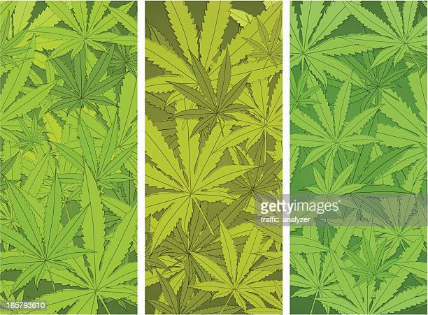 marijuana banners - rastafarian stock illustrations, clip art, cartoons, & icons
