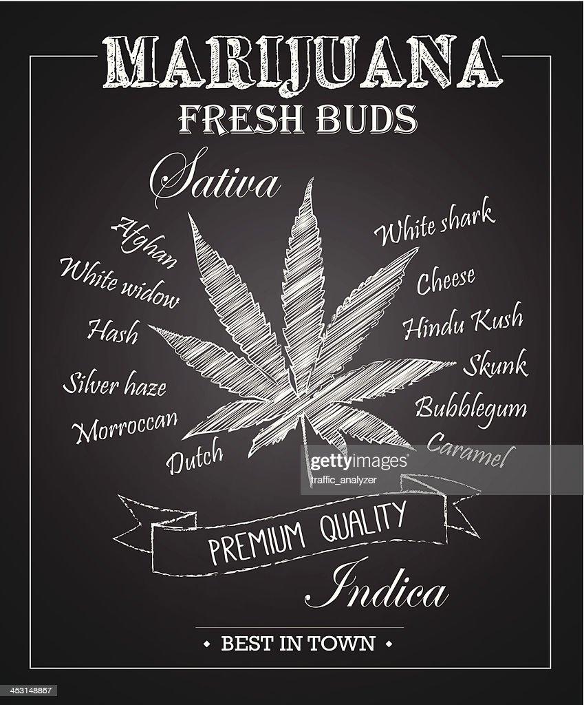 Marijuana chalkboard art : Stock Illustration