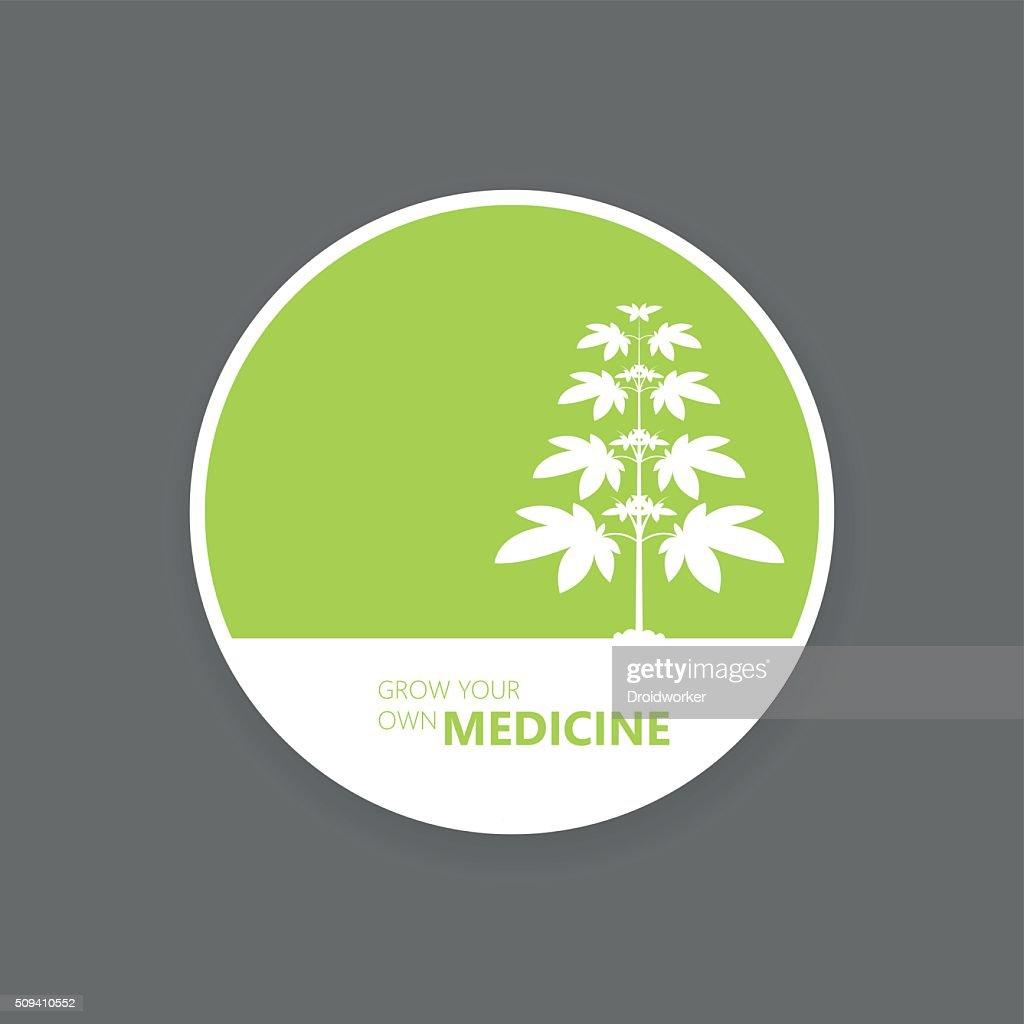 Marijuana growing concept. Flat style design vector illustration.