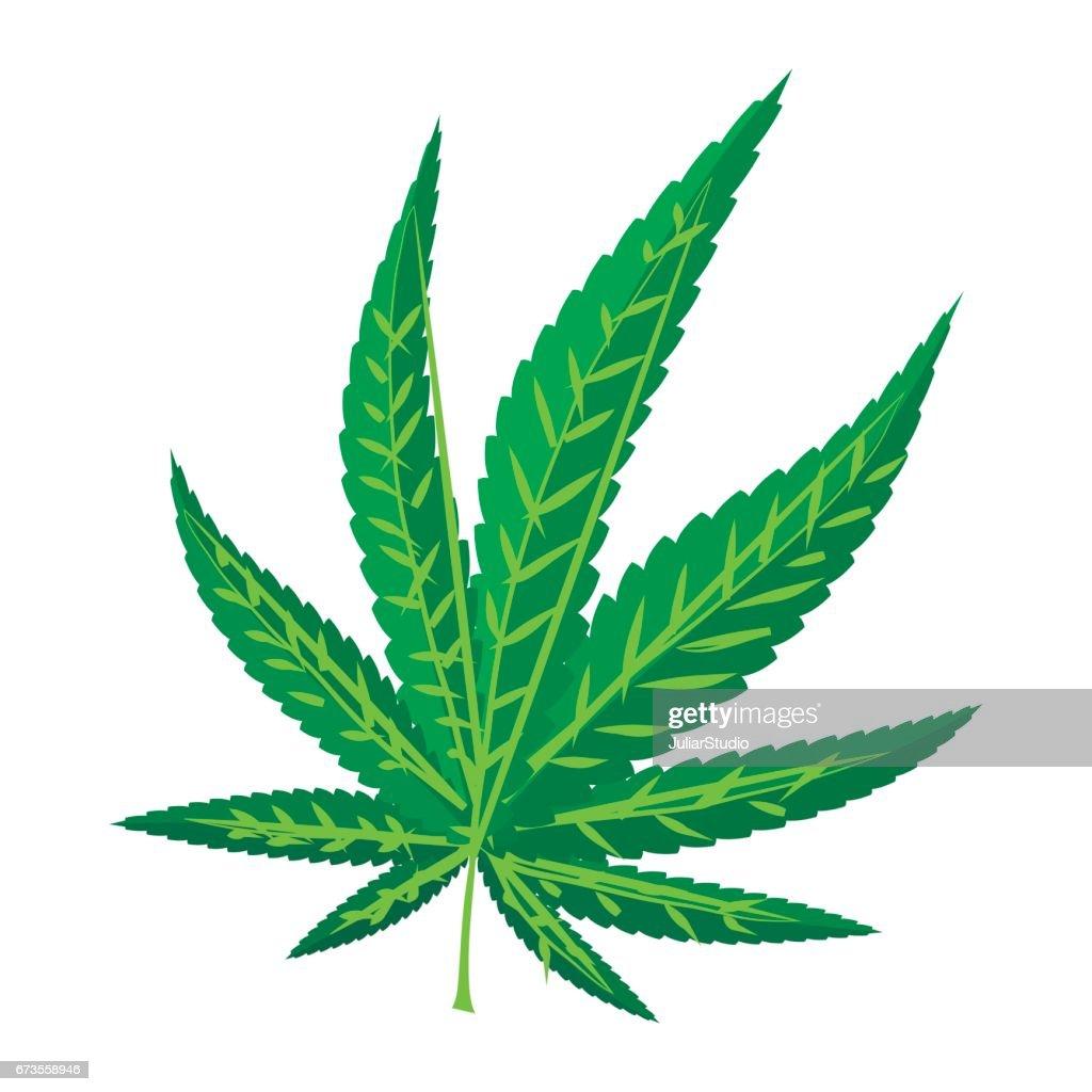 Marijuana leaf icon, cartoon style