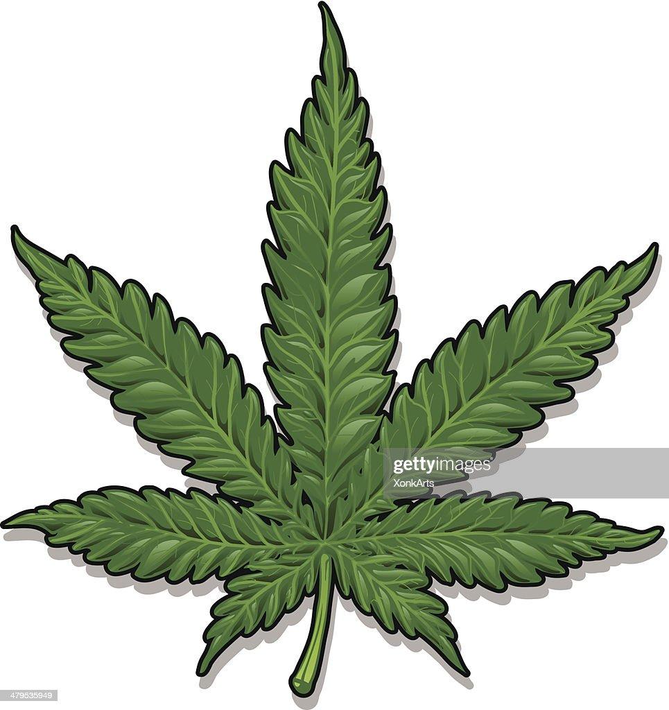 Marijuana Leaf : stock illustration