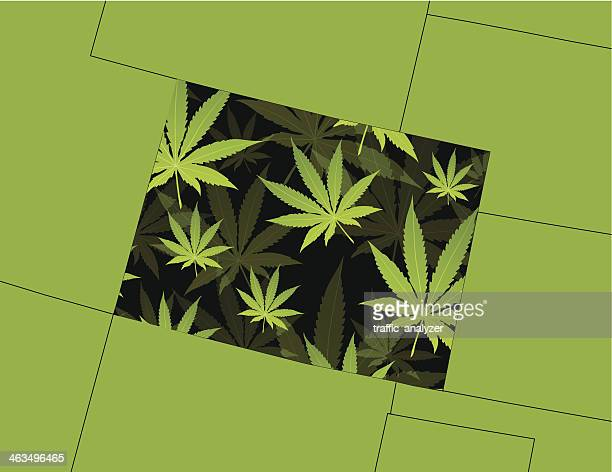 ilustrações, clipart, desenhos animados e ícones de maconha folhas de mais de colorado state - baseado
