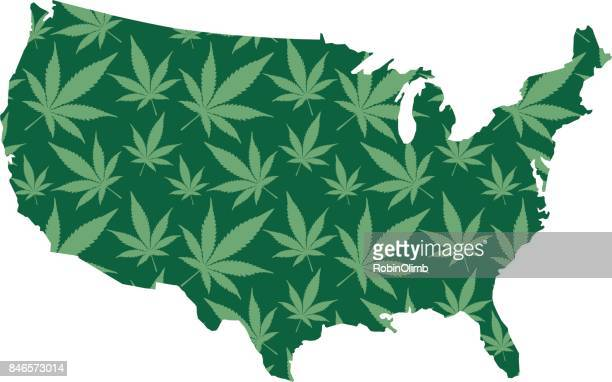usa marijuana map - cannabis plant stock illustrations, clip art, cartoons, & icons
