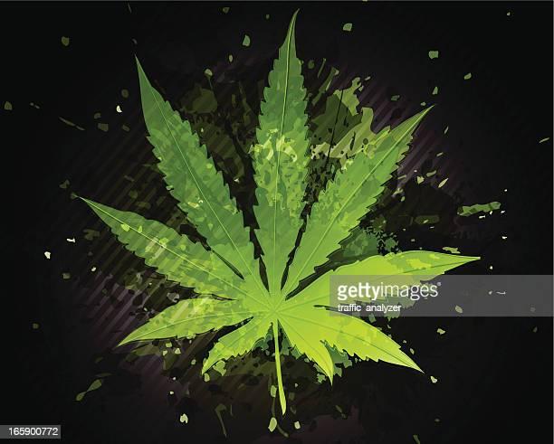 marijuana plant - rastafarian stock illustrations, clip art, cartoons, & icons