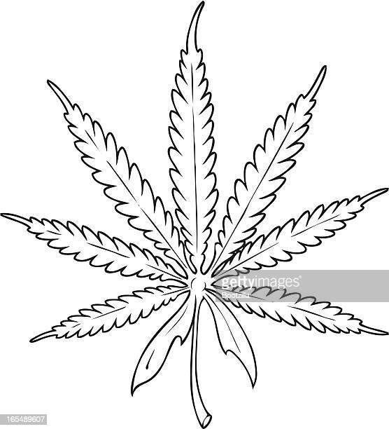 ilustrações, clipart, desenhos animados e ícones de maconha - intoxicação por cannabis