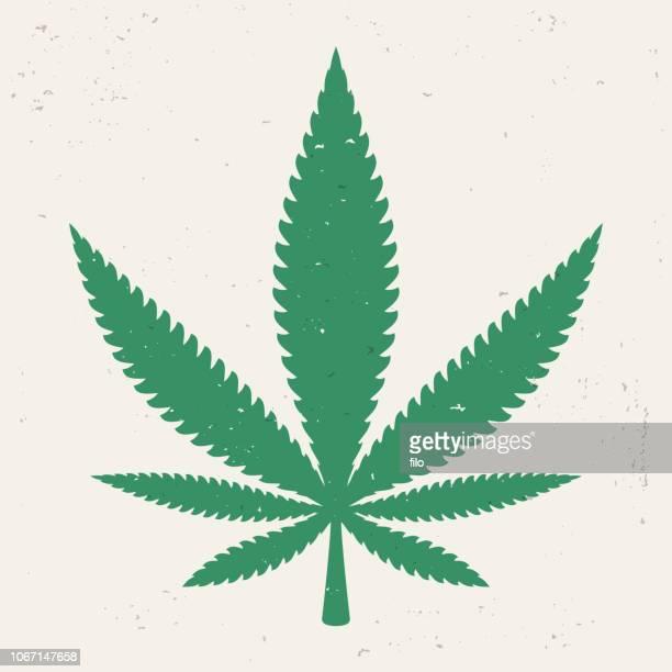 marijuana weed pot leaf - hemp stock illustrations, clip art, cartoons, & icons