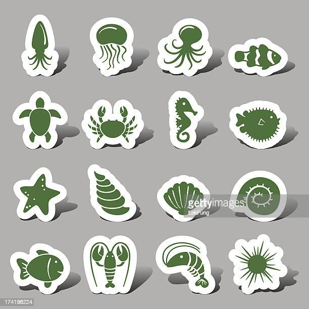 marine animal interface icons - anemonefish stock illustrations, clip art, cartoons, & icons